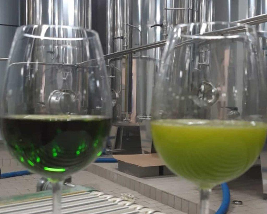 Unfiltered vs. filtered Olive Oil