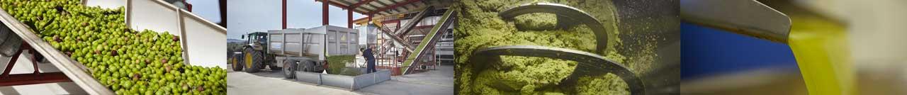 Casas de HUaldo olive oil milling