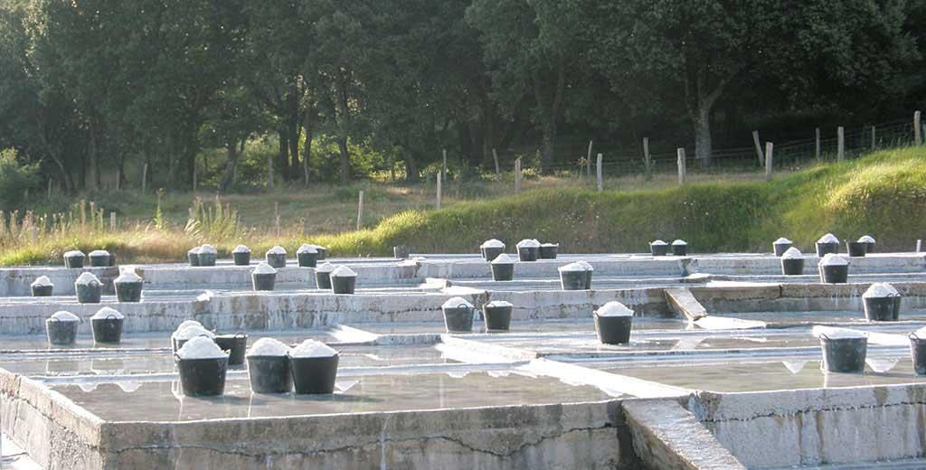 Saline in Salinas de Oro