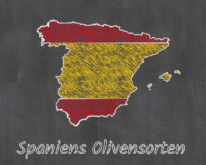 Spaniens Olivensorten